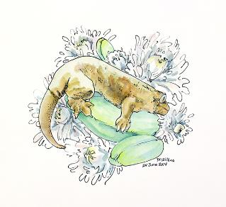 watercolor-ink-leachie-Taylor-Wilkes.jpg