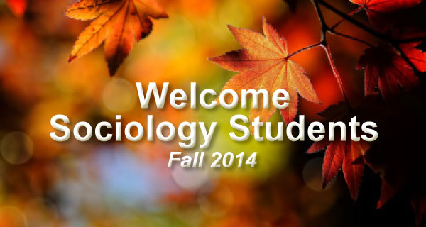 Sociology best careers to pursue in college