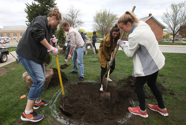 Students gathered April 21 to plant trees in BGSU's campaign to become a Tree Campus USA