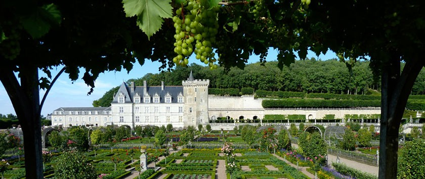 HOME-BANNER---Chateau-de-Villandry-kitchen-garden-2