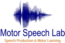 dissertation speech therapy Master's thesis option  to incorporate a thesis research project within the parameters of the five  three types of visual screen displays on speech .