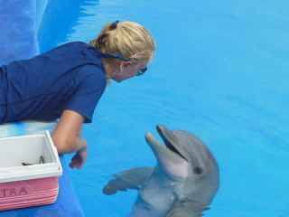 Stephanie Maiorano with dolphin