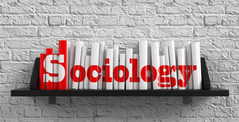 What can you do with a Sociology Degree?