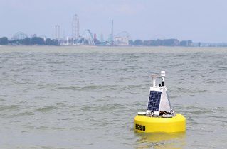 Drs. George Bullerjahn and Mike McKay, biology, are leading a team studying harmful algal blooms in Sandusky Bay. A special buoy with sensors attached was deployed in the bay July 1, 2015 to gather data, which will be uploaded by satellite link and sent directly to the team's cell phones for real-time information.