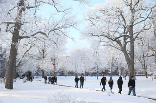BGSU students aren't intimidated by cold temperatures.