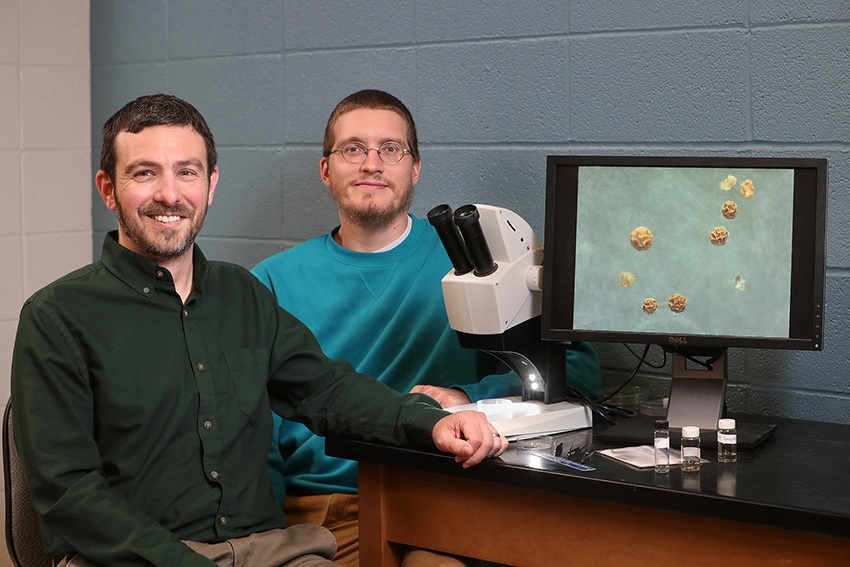 Dr. Kevin McCluney part of $780,000 NSF grant study