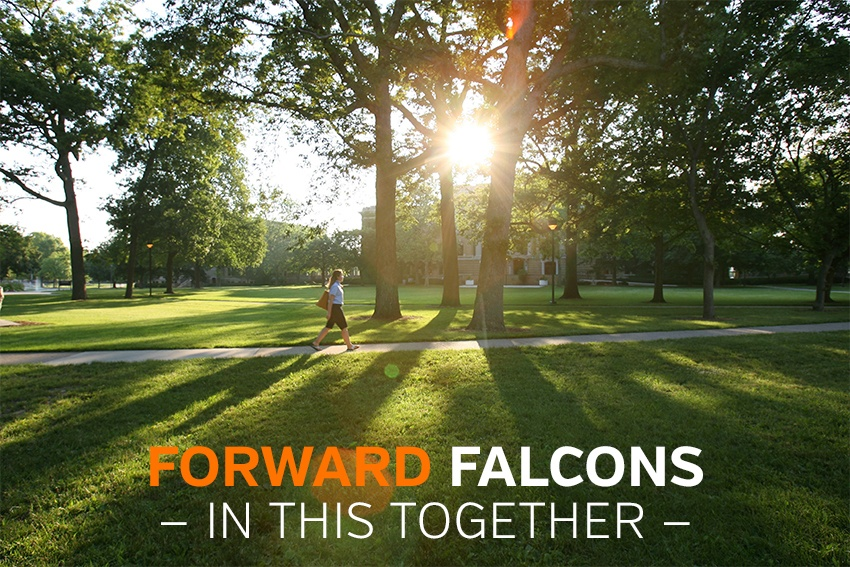 Forward Falcons - In this together