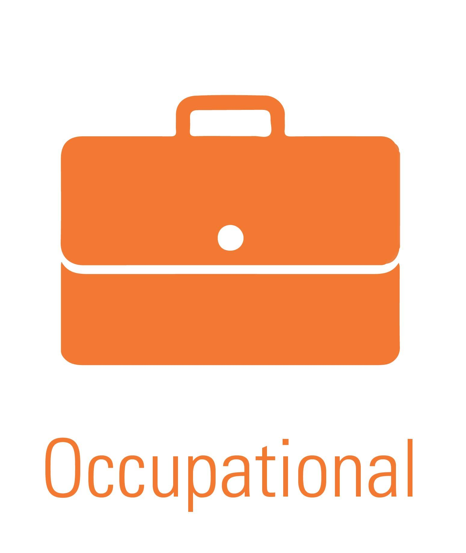 Occupational Well-Being